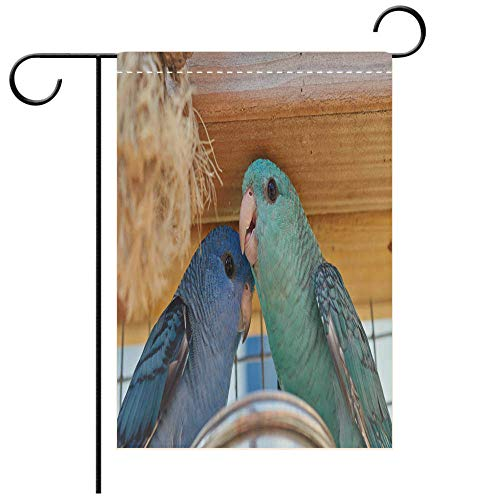 BEICICI Artistically Designed Yard Flags, Double Sided Family Portrait of Blue and Turquoise Barred Parakeet Close up Best for Party Yard and Home Outdoor Decor