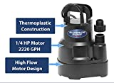 Superior Pump 91014 Thermoplastic Oil-free Utility
