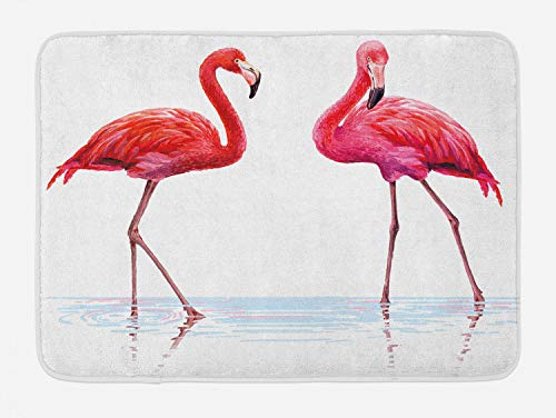 Ambesonne Animal Bath Mat, 2 Hand Drawn Flamingos in Pink Colors on Seaside Tropical Wildlife Artwork, Plush Bathroom Decor Mat with Non Slip Backing, 29.5