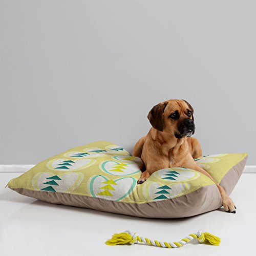 Deny Designs Hello Twiggs Picking Apples Pet Bed, 40 by 30-Inch by DENY Designs