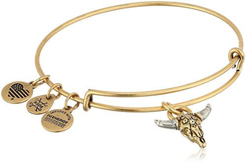 Alex and Ani Spirited Skull Bangle Bracelet, Rafealian Gold, Expandable