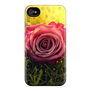 Forever Collectibles Rose Grass Sunbeam Hard Snap-on Iphone 4/4s Case