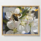 Society6 Serving Tray with handles, 18'' x 14'' x 1 3/4'', Bee and Blossoms Photo by eileenfleming
