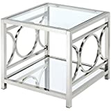Furniture of America Beller Square End Table in Chrome