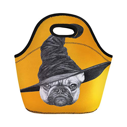 Semtomn Lunch Tote Bag Dog Portrait of French Bulldog Witch Hat Halloween Animal Reusable Neoprene Insulated Thermal Outdoor Picnic Lunchbox for Men Women