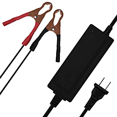 Mighty Max Battery 12V 2 AMP Charger MAINTAINER for 12V 9AH SLA 6FM9 Scooter Battery Brand Product: Electronics