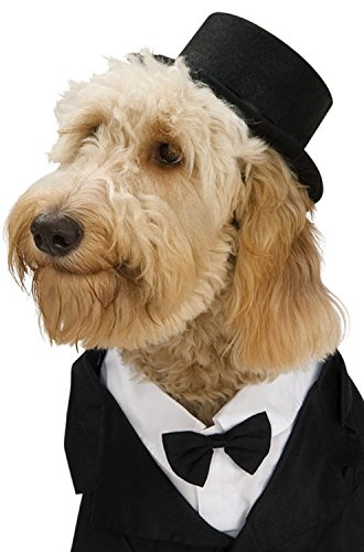 [Rubies Costume Company Top Hat for Your Pet, Medium/Large] (Weimaraners In Costumes)