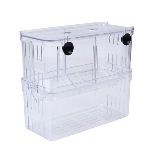 Breeding Box,EFORCAR Mini Fish Breeding Tank Incubator Isolation Acrylic for Aquarium Hatching Tanks (Large) by EFORCAR