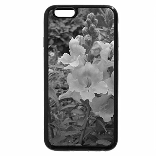 iPhone 6S Plus Case, iPhone 6 Plus Case (Black & White) - Greenhouse photography day 17