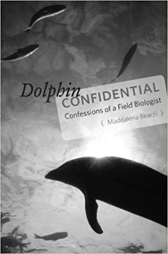 amazing dolphin encounter candid-hd