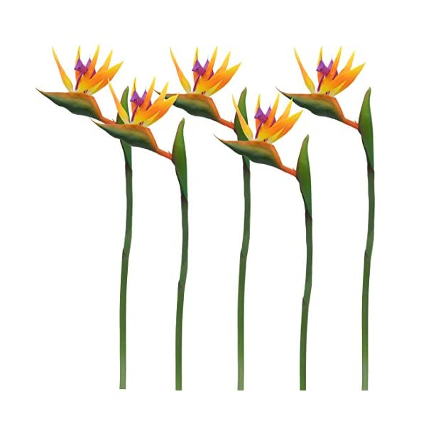 """Calcifer 32"""" Real Touch Bird of Paradise Artificial Flowers Bouquet for Home Garden Decoration/Wedding Party Decor Orange (Package Quantity: 5 Stems)"""