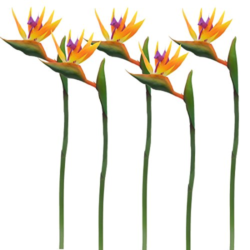 Calcifer 32'' Real Touch Bird of Paradise Artificial Flowers Bouquet for Home Garden Decoration/Wedding Party Decor Orange (Package Quantity: 5 ()