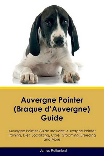 Download Auvergne Pointer (Braque d'Auvergne) Guide Auvergne Pointer Guide Includes: Auvergne Pointer Training, Diet, Socializing, Care, Grooming, Breeding and More pdf