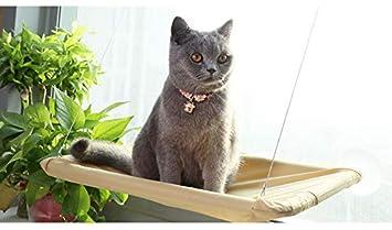 SOVECHO Gato Sunny Asiento Montado Gatos Cama Gatos Hommock: Amazon.es: Productos para mascotas