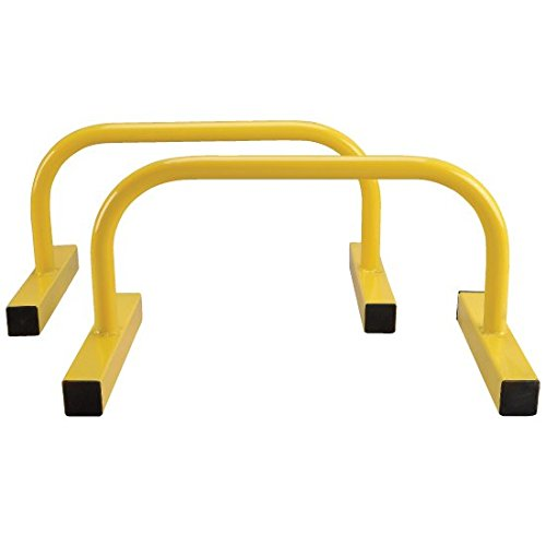 Perform Better Parallettes Pushup Bars