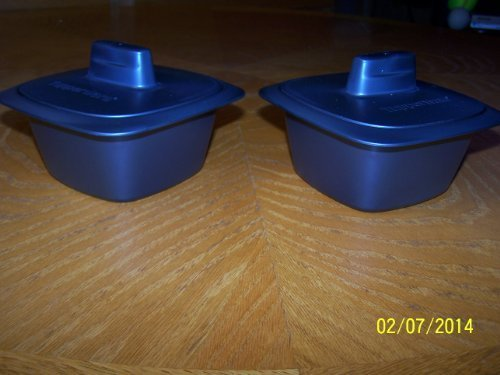 Tupperware UltraPro Minis Set of 2 W/Covers 2cup each Cosmos