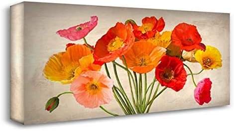 Amazon Com Villa Luca 24x12 Gallery Wrapped Stretched Canvas Art Titled Poppies In Spring Posters Prints