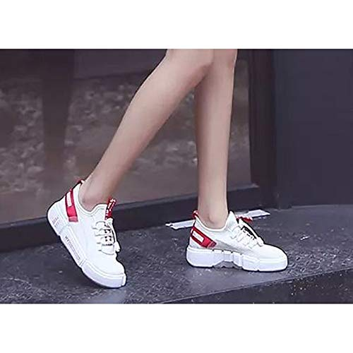 Spring Blanco Sneakers Confortable Zapatos ZHZNVX Heel Toe para Negro Mujer amp; White Fall Casual Flat Mesh Round w1nXFfqnp