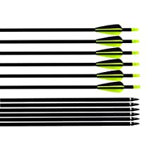 """Albertu 31"""" Hunting/Targeting Practice Carbon Fiber Arrows With Plastic Vanes Feathers and Replacement Screw-In Field Points"""