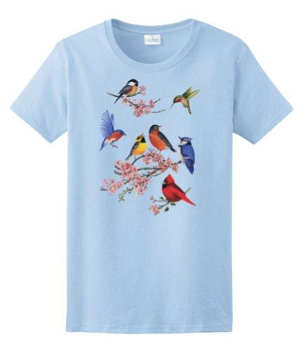 Bird Womens Light T-shirt - Express Yourself Ladies Songbirds of America Tee (Light Blue - Ladies XL)