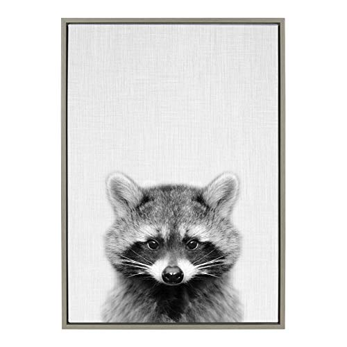 Kate and Laurel Sylvie Raccoon Black and White Portrait Framed Canvas Wall Art by Simon Te Tai, 23×33 Gray