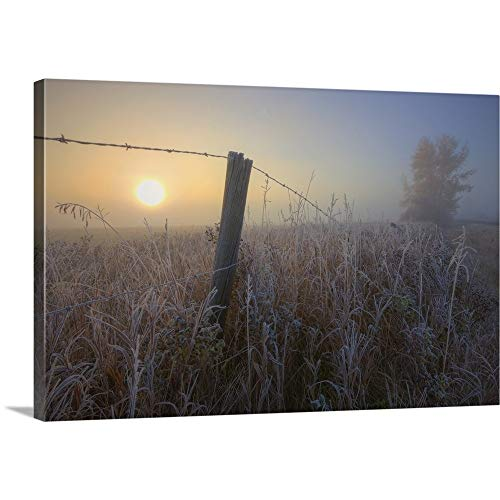Dan Jurak Premium Thick-Wrap Canvas Wall Art Print Entitled Sunrise Over Hoar Frost-Covered Barbed Wire Fence, Alberta Prairie, Canada - Fence Canvas