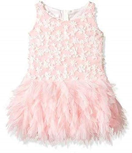 Biscotti Girls' Frilly Flowers Dress with Embroidered Bodice,