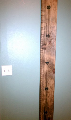 Amazon Wood Growth Ruler Growth Chart Everything Else