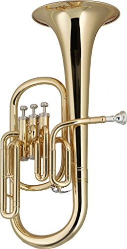 Stagg WS-AH235 Eb Alto Horn with Case by Stagg