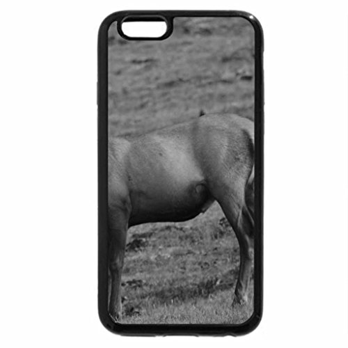 iPhone 6S Case, iPhone 6 Case (Black & White) - Spike Bull Elk