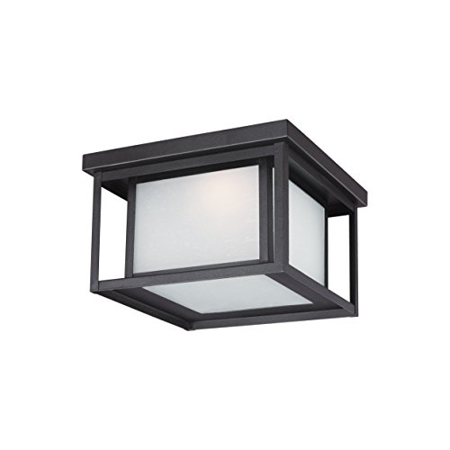 Contemporary Outdoor Ceiling Lighting - 4