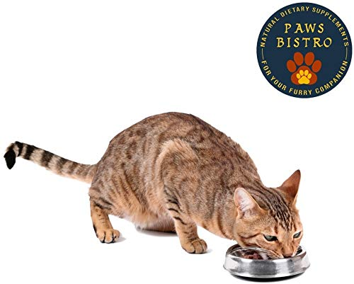 Amazon.com: Paws Bistro Cat/Kitten SuperFood Seasonings ...