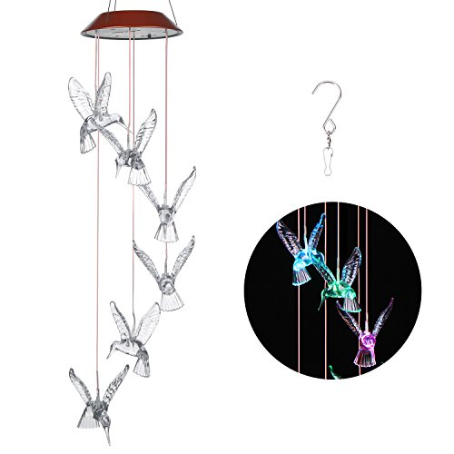 Windlights Changing Hummingbird Gardening Decoration product image