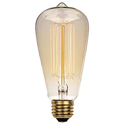 0 40 Watt ST20 Clear Timeless Vintage Inspired Bulb with Medium Base