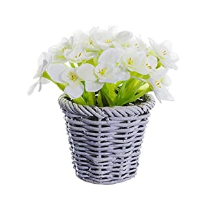 """Arcadia Silk Plantation 5.5"""" Narcissus in Basket White (Pack of 12) 37"""