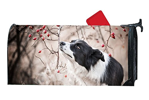 Taocaihop Border Collie Mailbox Cover - Mailbox Makeover - Vinyl Magnetic Cover 6.5