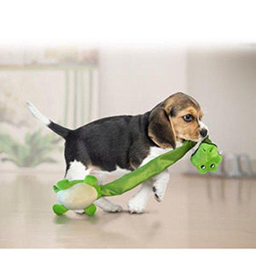 KONG Danglers Gator Dog Toy by KONG (Image #2)