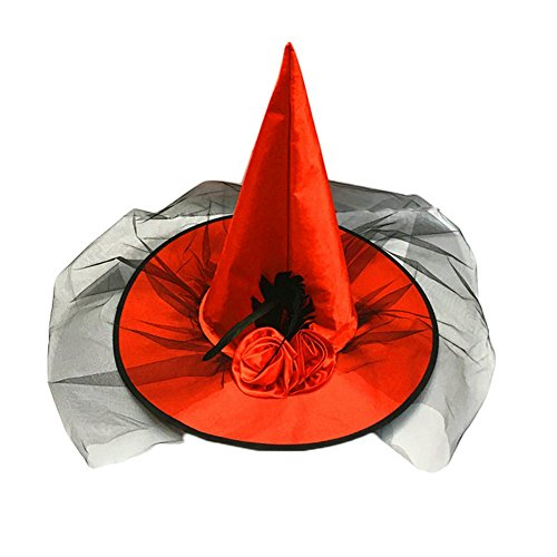Women's Red Deluxe Witch Hat Costume Accessory Feathers and Veil Costume (Red Witch Hat)