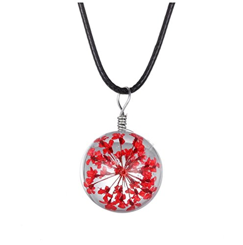 Winter's Secret Handmade DIY Rope Chain Round Shape Red Dried Flower Pendant Crystal Glass Charming Choker Necklace