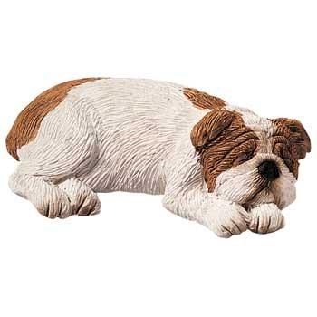 Sandicast Fawn Bulldog - 5