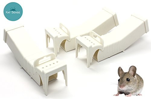 Catch Mouse Trap (Humane Mouse Traps, Set of 3, Cruelty Free Live Catch Trap, Catch and Release Mice Into The Wild, Best No Kill Mice House, by Kat)