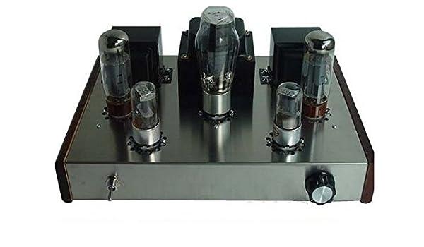 Amplificadores de válvulas GOWE modessimple-con mano spooff ...