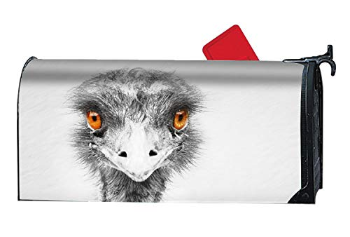 - Animal Emu Birds Magnetic Mailbox Cover - Holiday Themed, Decorative Vintage Mailbox Wrap for Standard Size