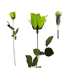 Tableclothsfactory 48 pcs Long Single Stem Rose Bundles - Wedding Artificial Flowers - Lime Green 37