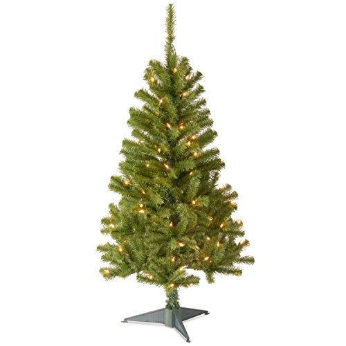 (National Tree 4 Foot Canadian Fir Grande Wrapped Tree with 100 Clear Lights (CFG7-304-40))