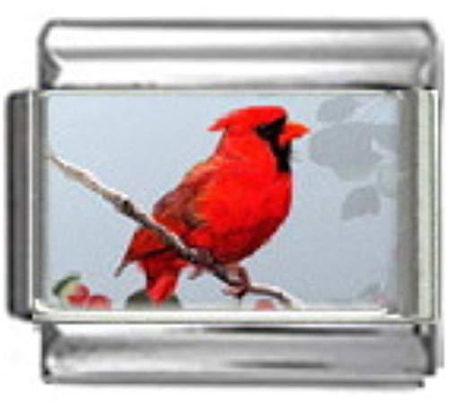 Stylysh Charms Cardinal Northern Bird Photo Italian 9mm Link BI005