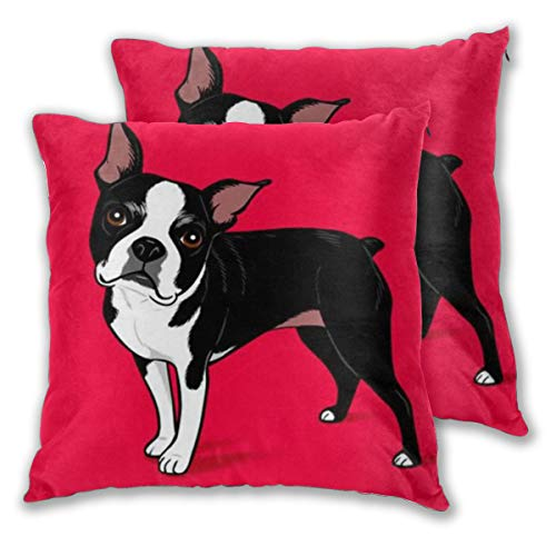 (Boston Terrier Dog Decorative Throw Pillow Covers, Stain-Resistant Soft Solid Square Cushion Cases for Couch Sofa Bedroom Kid¡¯s Room Car Office, 16x16 Inches)