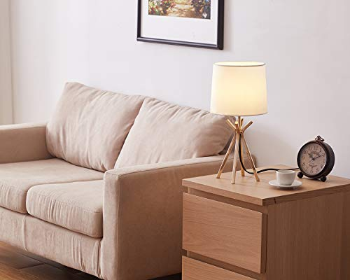 CASILVON Table Lamp YTL009G-2N (Rose) -  - lamps, bedroom-decor, bedroom - 41UhqvHWnBL -