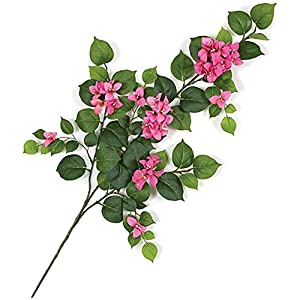 31 Inch Flowering Bougainvillea Branch Autograph Foliages Beauty, Fuchsia 3