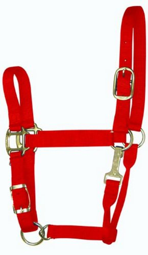 (Hamilton 3-5 1-Inch Adjustable Quality Horse Halter with Yearling Snap for Horses 300 to 500-Pound, Red)